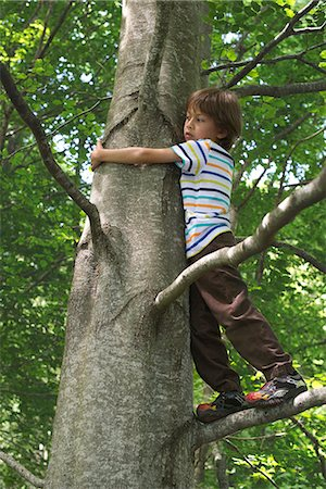 Boy standing in tree Stock Photo - Premium Royalty-Free, Code: 632-06317592