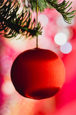 Christmas bauble hanging on branch Stock Photo - Premium Royalty-Free, Code: 632-06354416