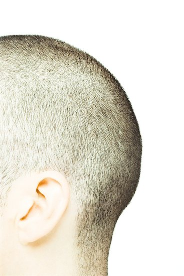 Back of man's shaved head, side view Stock Photo - Premium Royalty-Free, Image code: 632-01276660