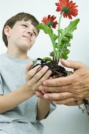 Boy holding flowers in cupped hands, low angle view Stock Photo - Premium Royalty-Free, Code: 632-01785217
