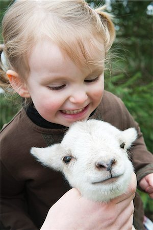 domestic sheep - Little girl petting lamb Stock Photo - Premium Royalty-Free, Code: 633-06354688