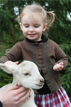 domestic sheep - Little girl petting lamb Stock Photo - Premium Royalty-Free, Code: 633-06354770