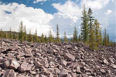 Volcanic rocks and evergreen trees in Lassen Volcanic National Park, California, USA Stock Photo - Premium Royalty-Free, Code: 633-08482092