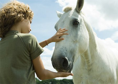 Boy petting horse Stock Photo - Premium Royalty-Free, Code: 633-01272335