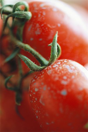 spot (dirt mark) - Vine tomatoes, extreme close-up Stock Photo - Premium Royalty-Free, Code: 633-01574282