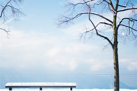 panoramic winter scene - Snow-covered lookout point with tree and bench overlooking lake Stock Photo - Premium Royalty-Free, Code: 633-01572907