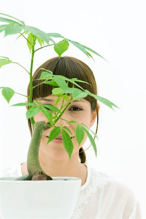 silk floss tree - Woman looking through leaves of potted plant, smiling at camera Stock Photo - Premium Royalty-Free, Code: 633-02065788