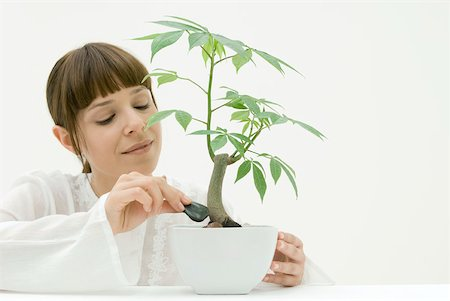 silk floss tree - Woman placing stones around base of potted plant Stock Photo - Premium Royalty-Free, Code: 633-02128710