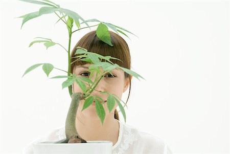 silk floss tree - Woman looking through leaves of potted plant, portrait Stock Photo - Premium Royalty-Free, Code: 633-02128712
