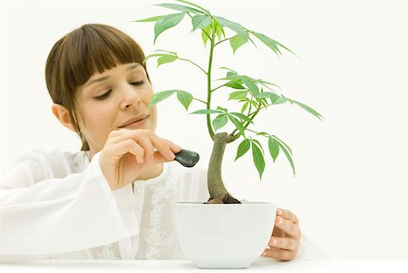 silk floss tree - Woman carefully placing stone at base of potted plant Stock Photo - Premium Royalty-Free, Code: 633-02345901