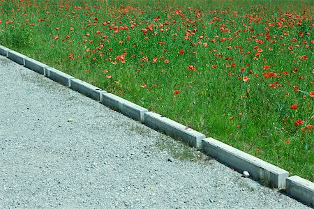 Gravel footpath by field of poppies Foto de stock - Sin royalties Premium, Código: 633-02417704
