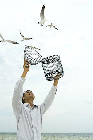 release - Man releasing bird outdoors, open cage in hand Stock Photo - Premium Royalty-Free, Code: 633-02417919