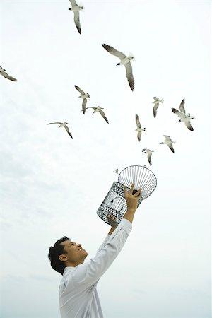 release - Man releasing bird outdoors, open cage in hand Stock Photo - Premium Royalty-Free, Code: 633-02417921