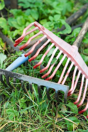 Rakes resting on ground Stock Photo - Premium Royalty-Free, Code: 633-02645232