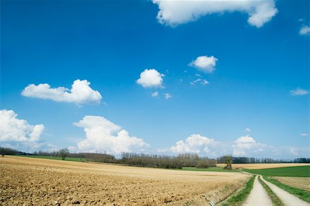road landscape - Rural landscape with dirt road Stock Photo - Premium Royalty-Free, Code: 633-02645520