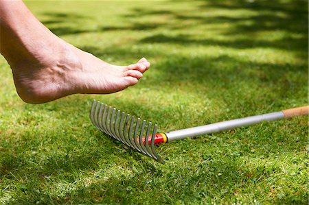 dangerous accident - Bare foot about to step on rake Stock Photo - Premium Royalty-Free, Code: 649-04247840