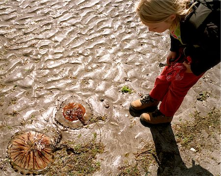 discovery - Girl examining beached jellyfish in sand Stock Photo - Premium Royalty-Free, Code: 649-05950531