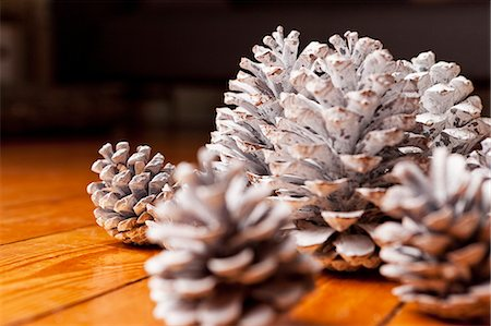painted - Close up of painted pine cones Stock Photo - Premium Royalty-Free, Code: 649-06001815