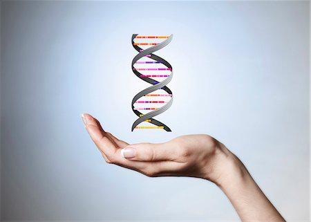 Hand holding strain of DNA Stock Photo - Premium Royalty-Free, Code: 649-06041472
