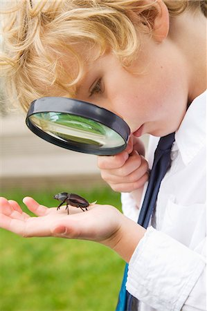 Boy examining bug with magnifying glass Stock Photo - Premium Royalty-Free, Code: 649-06041775