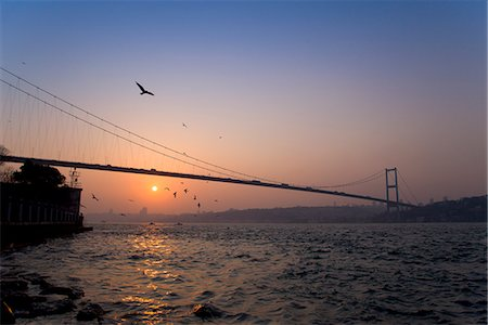 flying bird - Birds flying over Bosphorus Bridge, Istanbul, Turkey Stock Photo - Premium Royalty-Free, Code: 649-06113027