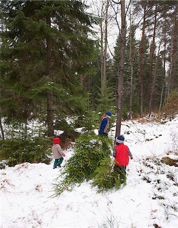 snow christmas tree white - Family dragging Christmas tree in forest Stock Photo - Premium Royalty-Free, Code: 649-06164681