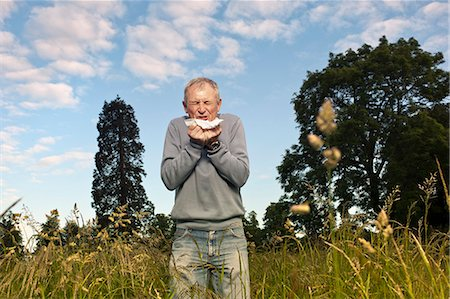 people coughing or sneezing - Man sneezing in tall grass Stock Photo - Premium Royalty-Free, Code: 649-06304860