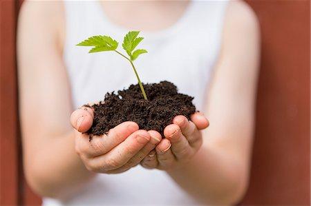 Girl holding seedling outdoors Stock Photo - Premium Royalty-Free, Code: 649-06305098