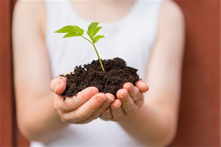Girl holding seedling outdoors Stock Photo - Premium Royalty-Free, Code: 649-06305098