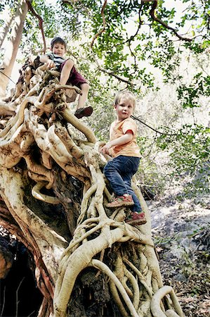 Children climbing tree together Stock Photo - Premium Royalty-Free, Code: 649-06305339
