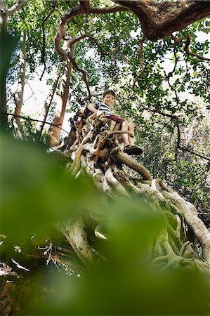 Boy sitting in tree top Stock Photo - Premium Royalty-Free, Code: 649-06305340