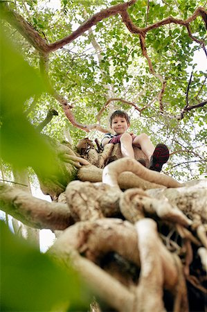 Boy sitting in tree top Stock Photo - Premium Royalty-Free, Code: 649-06305341