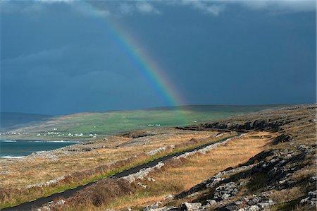 rainbow - Rainbow over rural landscape Stock Photo - Premium Royalty-Free, Code: 649-06305358