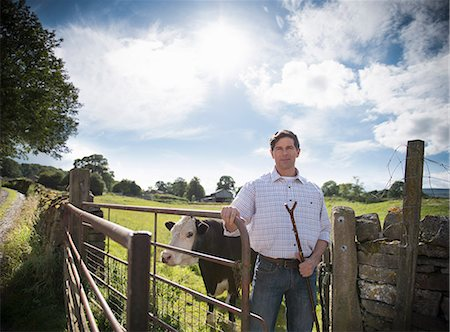 stick - Farmer standing by gate with cow Stock Photo - Premium Royalty-Free, Code: 649-06353035