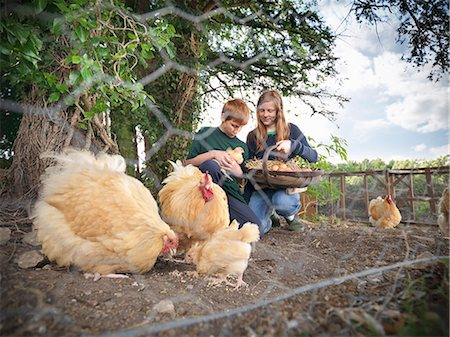 red hair preteen girl - Children gathering eggs from chickens Stock Photo - Premium Royalty-Free, Code: 649-06353056