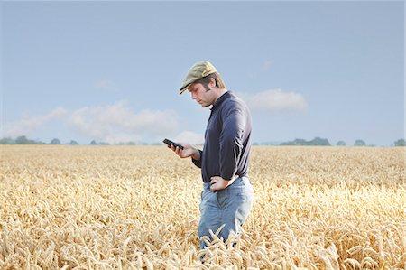 farm phone - Farmer using cell phone in crop field Stock Photo - Premium Royalty-Free, Code: 649-06353299