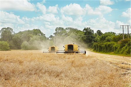 Threshers working in crop field Stock Photo - Premium Royalty-Free, Code: 649-06353291