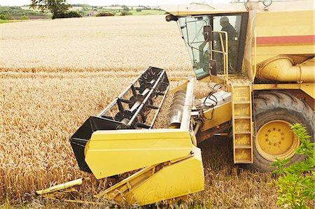 Thresher working in crop field Stock Photo - Premium Royalty-Free, Code: 649-06353308