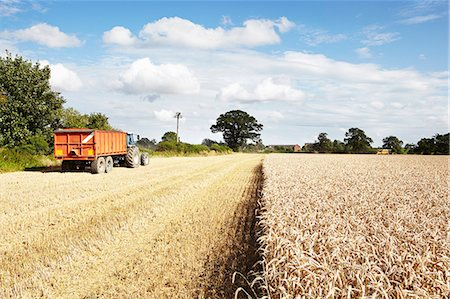 Tractor driving in harvested crop field Stock Photo - Premium Royalty-Free, Code: 649-06353310