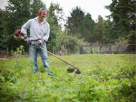 Man trimming weeds in garden Stock Photo - Premium Royalty-Free, Code: 649-06401010