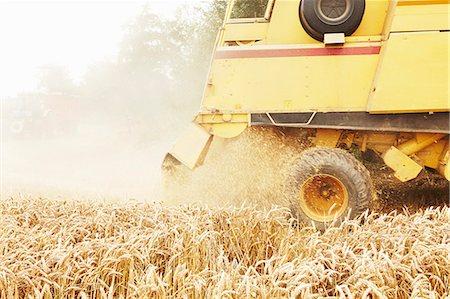 Tractor harvesting grains in crop field Stock Photo - Premium Royalty-Free, Code: 649-06401209