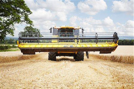 Harvester working in crop field Stock Photo - Premium Royalty-Free, Code: 649-06401245