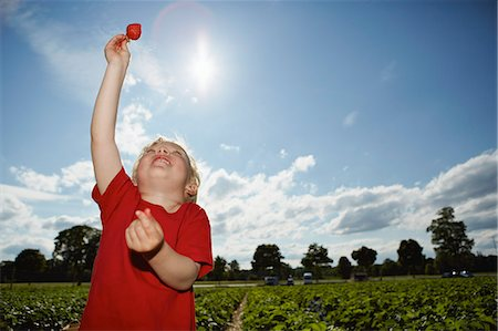 sun - Boy holding strawberry in field Stock Photo - Premium Royalty-Free, Code: 649-06401297