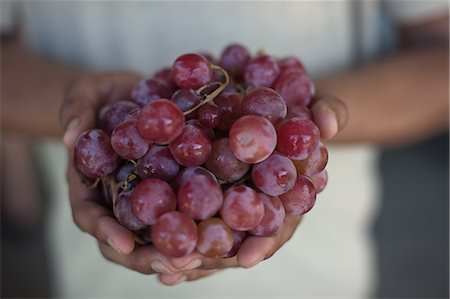 Close up of hands holding grapes Stock Photo - Premium Royalty-Free, Code: 649-06432393