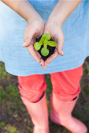 spring - Woman holding sprout in dirt Stock Photo - Premium Royalty-Free, Code: 649-06432665
