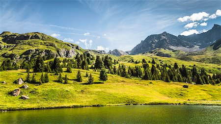 Trees and lake in grassy rural landscape Stock Photo - Premium Royalty-Free, Code: 649-06433173