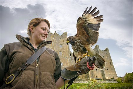 Woman with hawk and gauntlet outdoors Stock Photo - Premium Royalty-Free, Code: 649-06489555