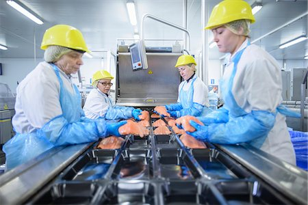 food processing plant - Workers packing fish in factory Stock Photo - Premium Royalty-Free, Code: 649-06533449