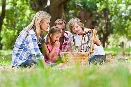 four - Family having picnic in park Stock Photo - Premium Royalty-Free, Code: 649-06717255