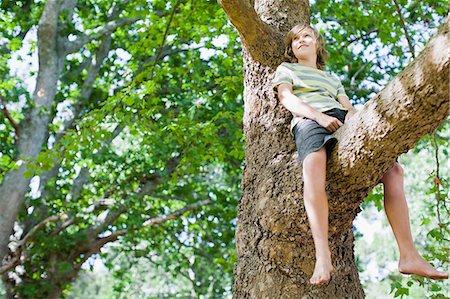 Smiling boy sitting in tree Stock Photo - Premium Royalty-Free, Code: 649-06717299